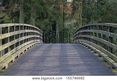 Wooden bridge Curved wooden bridge in a country park