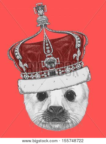 Portrait of Baby Fur Seal with crown. Hand drawn illustration.