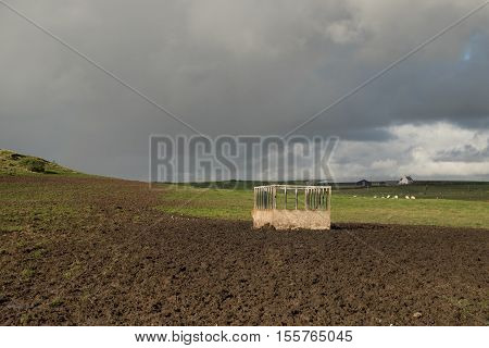 A metal feeder hay hopper in a field with grass and mud under a grey cloudy sky.