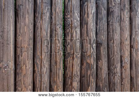 tall, strong fence from pine logs without bark for protection and defense