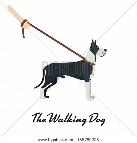 Great Dane dog breed - on white background. Vector illustration