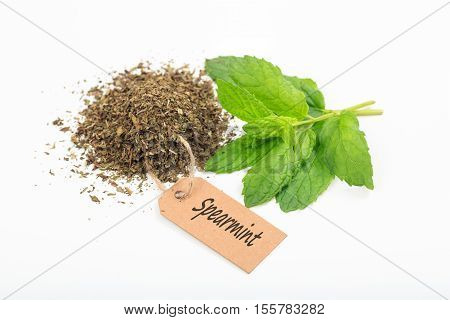 Fresh And Dried Spearmint On White Background