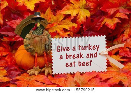 Funny Happy Turkey Day message Some fall leaves and a turkey sitting on a pumpkin and a gift tag with text Give a turkey a break and eat beef