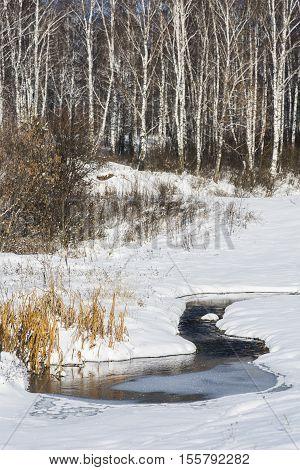 Winter landscape of Siberia. A little frozen river among the white snow.