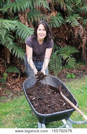 Middle aged woman gardening with home made compost in wheelbarrow. Photographed in New Zealand NZ.