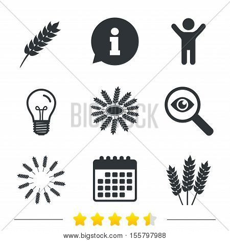 Agricultural icons. Gluten free or No gluten signs. Wreath of Wheat corn symbol. Information, light bulb and calendar icons. Investigate magnifier. Vector