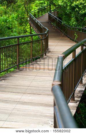 Empty elevated wooden walkway
