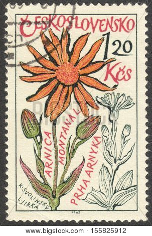 MOSCOW RUSSIA - CIRCA OCTOBER 2016: a stamp printed in CZECHOSLOVAKIA shows an Arnica montana flower the series
