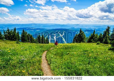 Hiking through the high alpine meadows with wildflowers on Tod Mountain in the Shuswap Highlands of central British Columbia