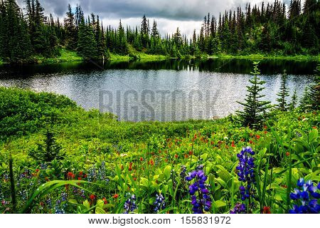 Tod Lake in the high alpine of Tod Mountain surrounded by alpine meadows full of wildflowers in the Shuswap Highlands in central British Columbia