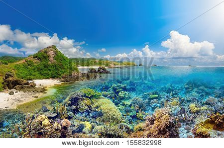 Beatiful coral reef around island Lombok Indonesia