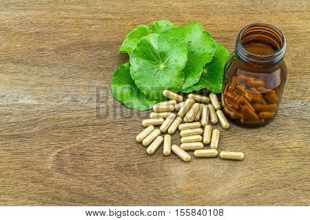 Green Asiatic Pennywort (Centella asiatica ) and black bottle pill capsules on wooden background