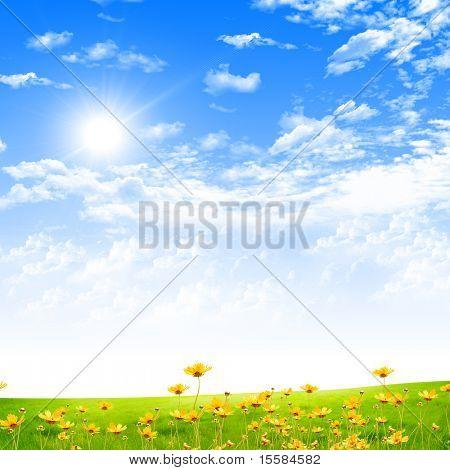 Prachtige landschap met blauwe hemel, zon en groen gras