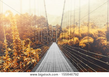 Beautiful autumn forest and sunlight, with steel suspension bridge at foggy day in the morning, vintage tone