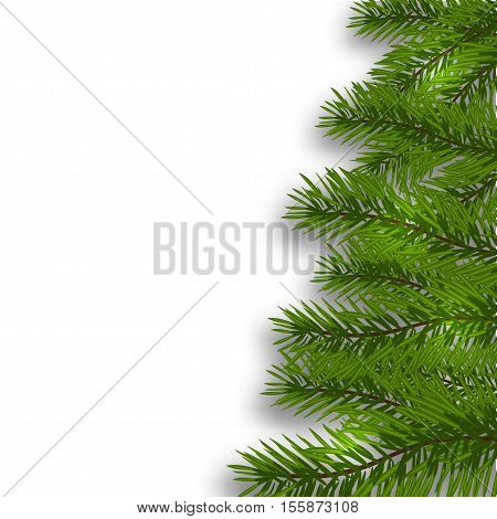 Green lush branch realistic ate with one hand and shadow. Isolated white background. vector illustration