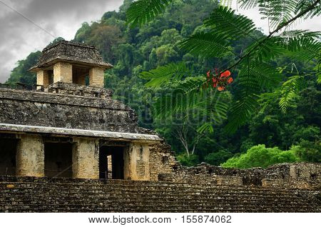 The ruins of the ancient Mayan city of Palenque Mexico.