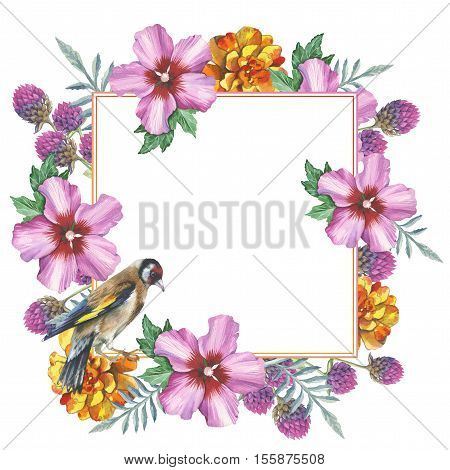 Wildflower hibiscus frame in a watercolor style isolated. Full name of the plant: marigold, hibiscus, gomphrena. Aquarelle wild flower for background, texture, wrapper pattern, frame or border.