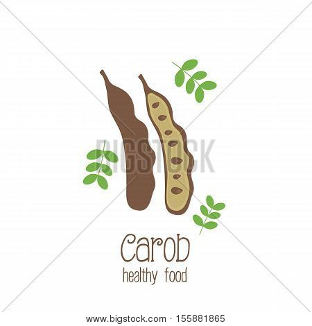 Carob pods. Used for the production of carob powder. Vegetarian decaffeinated food. illustration