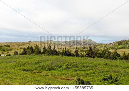 Newfoundland Landscape