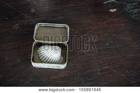small conch in the small box on the old brown wooden table