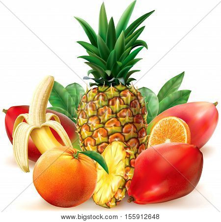 Juicy tropical fruit with leaves and slices. Vector illustration