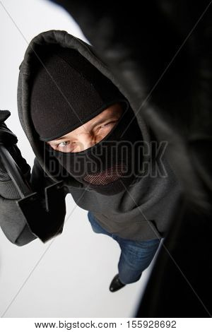 Housebreaker on pure white background