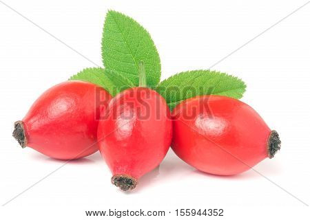 three fresh rose hip berry with leaves isolated on white background.