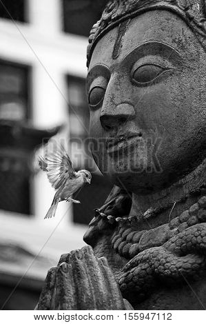 A buddha stone statue with flying bird. Windows on background. Film noir style image. Black and white art processing