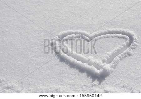 White snow with drown heart shape. heart drawn in the snow. background for valentines day Christmas new Year . Frozen coniferous branches covered with winter snow. Christmas new Year