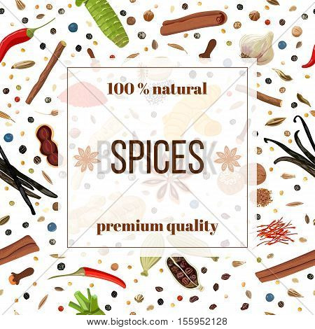 Cooking spices seamless pattern vector banner set. Popular culinary herbs. Design for cosmetics, store, market, natural health care products. Can be used as logo, label, web, textile, emblem
