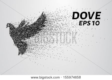 The dove of the particles. Dove consists of small circles and dots. Vector illustration
