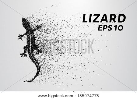 Lizard of particles. The lizard consists of small circles and dots. Vector illustration