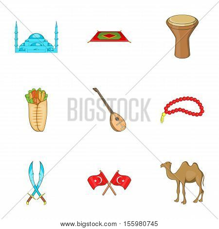 State of Turkey icons set. Cartoon illustration of 9 state of Turkey vector icons for web