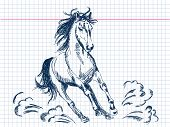 Hand drawn horse Vector. Visit my portfolio for big collection of doodles poster