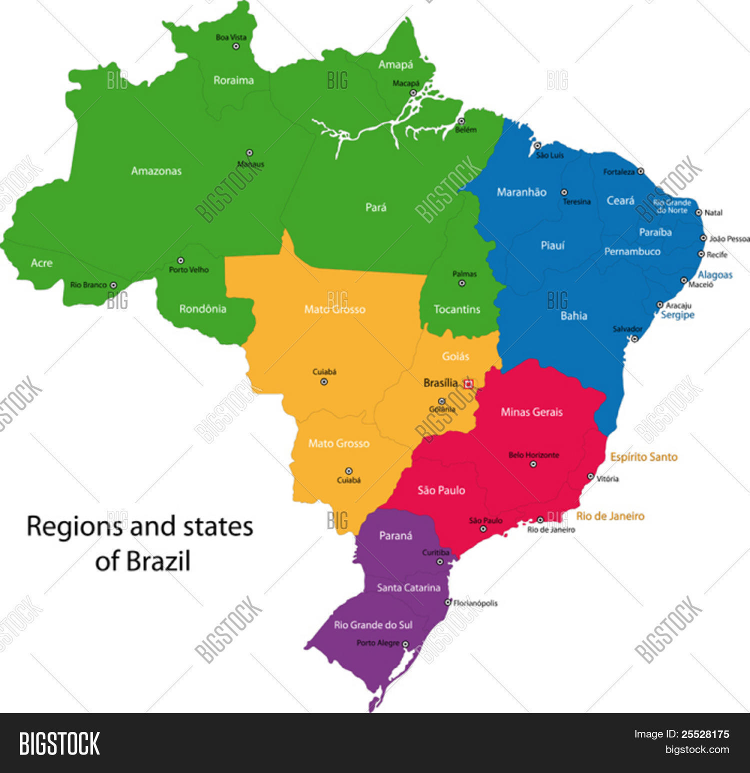 Colorful Brazil Map Regions Vector Photo Bigstock