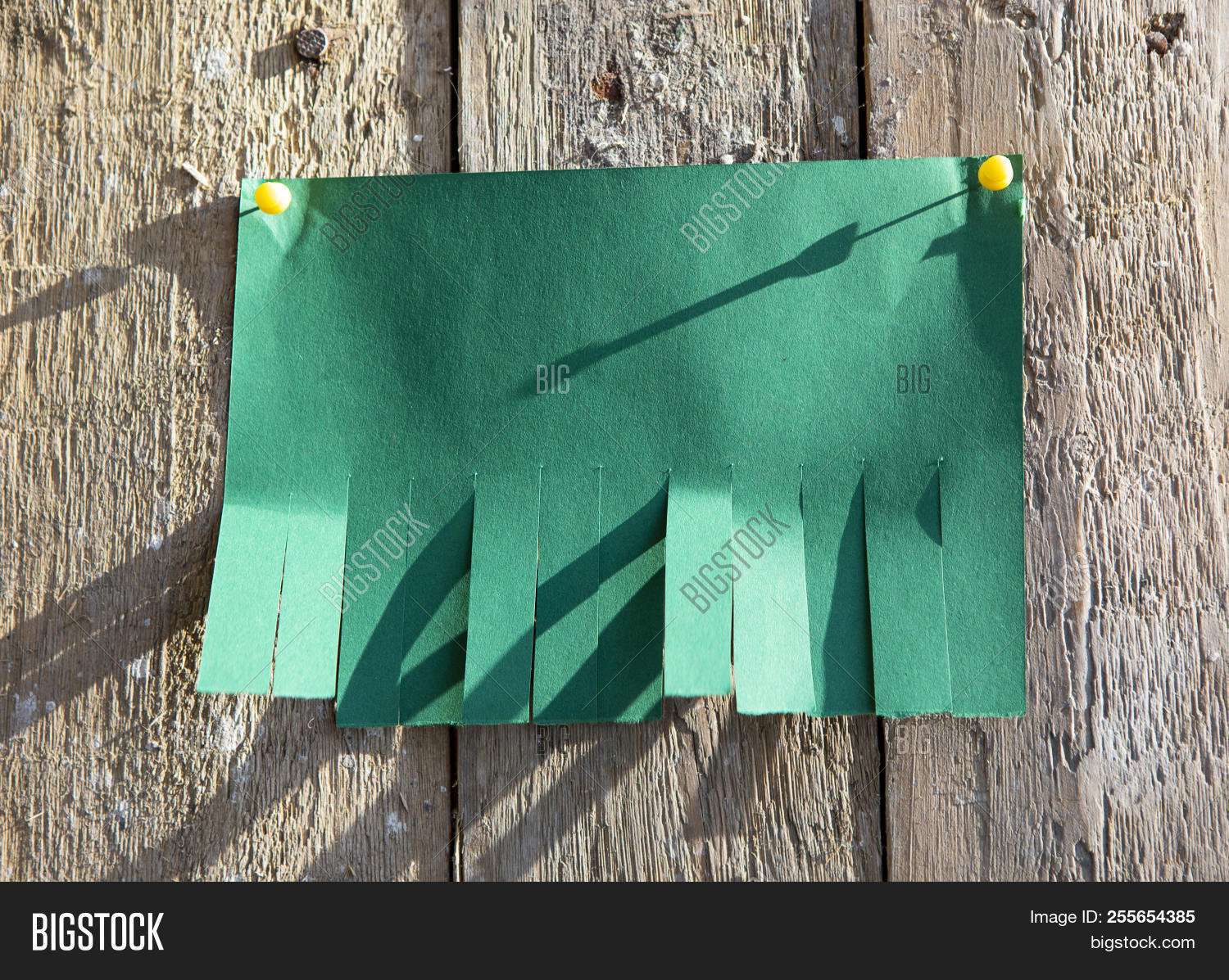 blank green paper tear image photo free trial bigstock