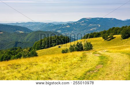 Wooden Hut On Alpine Grassy Meadow. Mountain Range In The Distance. Beech Forest On Hills. Lovely Su