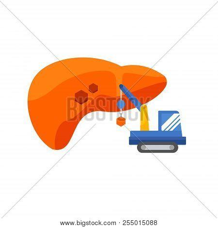 Liver Infographic Vector Illustration. Treatment Regeneration Decay Drug. Regeneration Of The Liver