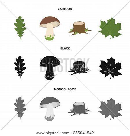 Oak Leaf, Mushroom, Stump, Maple Leaf.forest Set Collection Icons In Cartoon, Black, Monochrome Styl