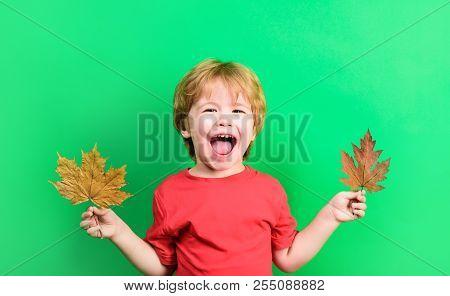 Autumn. Happy Boy Holds Maple Leaf. Smiling Kid With Autumn Leaf. Yellow Maple Leaf. Boy Holds Yello