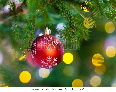 Xmas Background - One Red Ball With Snowflake On Natural Christmas Tree Twig Indoor