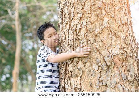 Boy Hugging At A Tree