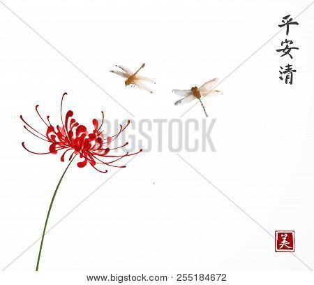 Red Chrysanthemum And Two Little Dragonflies On White Background. Traditional Oriental Ink Painting