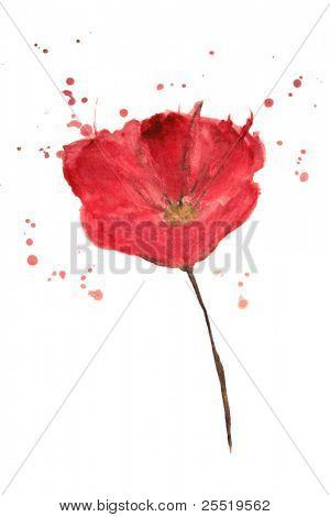 Aquarell Mohn Blumen malte, Vektor