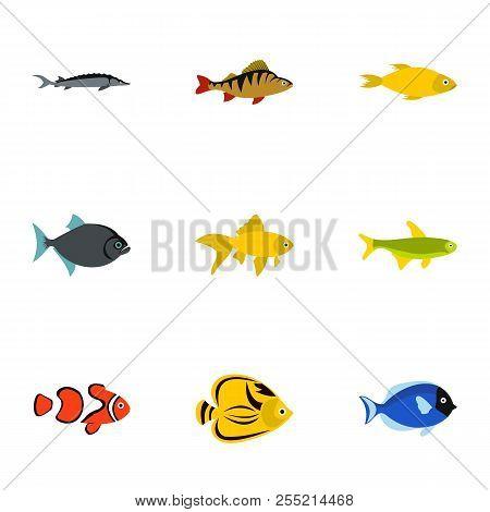 Fish Icons Set. Flat Illustration Of 9 Fish Icons For Web