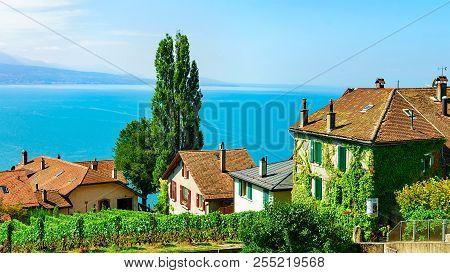 Lavaux, Switzerland - August 30, 2016: Chalets In Vineyard Terraces Hiking Trail Of Lavaux, Lake Gen