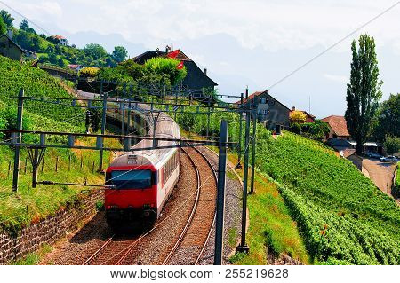 Lavaux, Switzerland - August 30, 2016: Running Train At Lavaux Vineyard Terraces Hiking Trail, Lavau