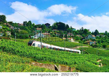 Lavaux, Switzerland - August 30, 2016: Running Train At The Railroad Near Lavaux Vineyard Terrace Hi
