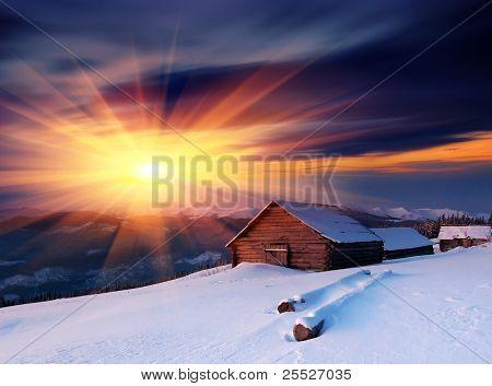 Winter landscape fresh snow. Ukraine, Carpathians