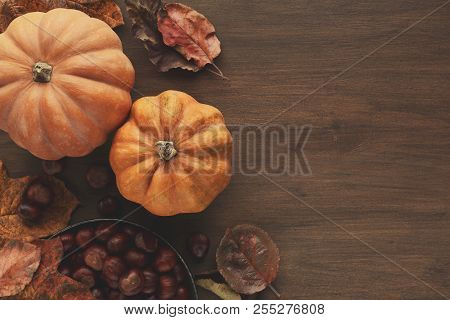 Beautiful Pumpkins With Chestnuts And Leaves On Wooden Table With Copy Space, Top View. Cozy Autumn